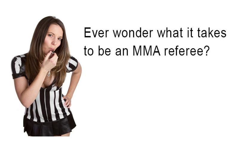 mma-referee-school