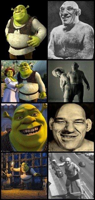 Tillet Shrek