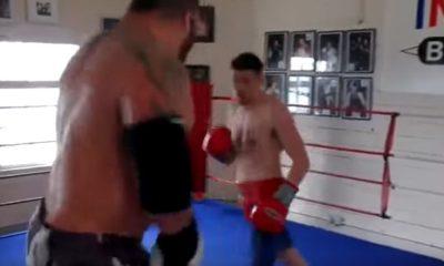 giant-boxer